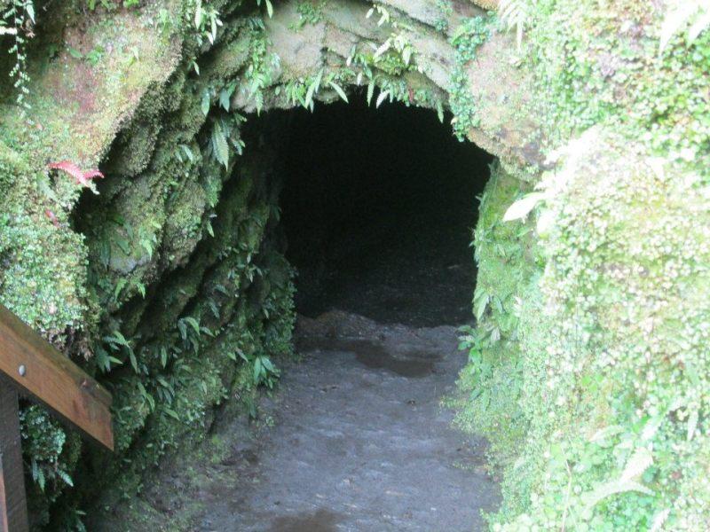 glowworm-cave