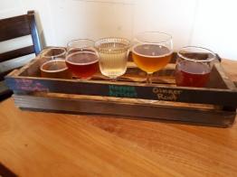 Cider samples